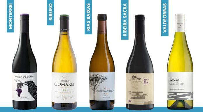 Galicia: vinos con Denominación de Origen