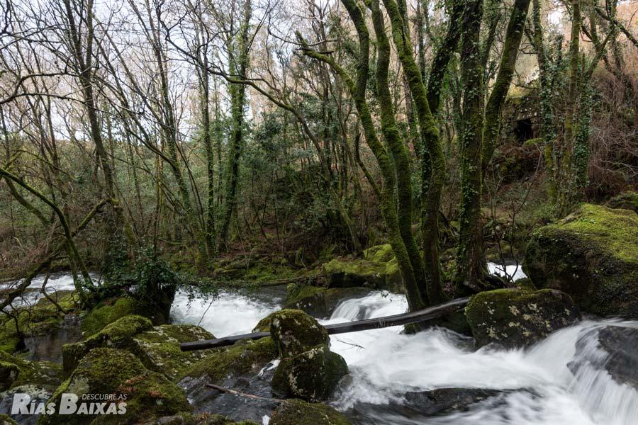 Río de A Patela