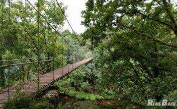 Puente colgante de Calvelo
