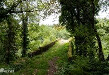 Puente medieval de Pedre